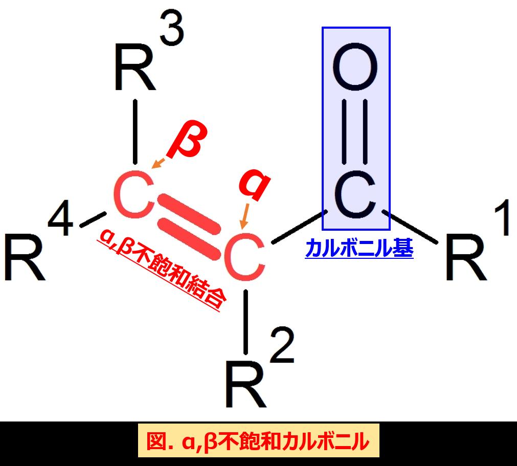 マイケル付加はカルボニル炭素と二重結合のどちらに対して起こる?