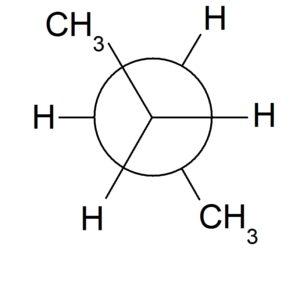 ニューマン投影図