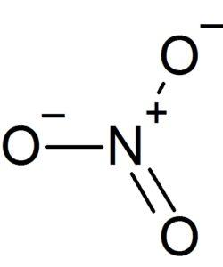 硝酸イオン