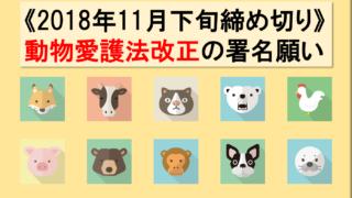 2018年動物愛護法改正