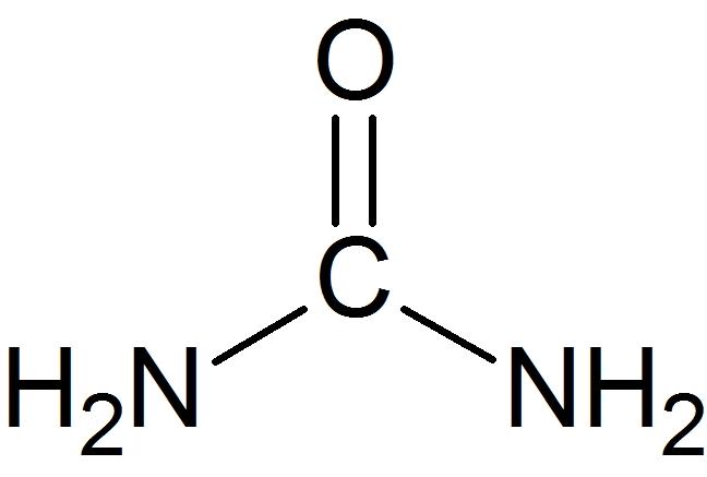 尿素の構造式