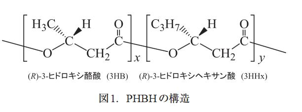 PHBH構造式